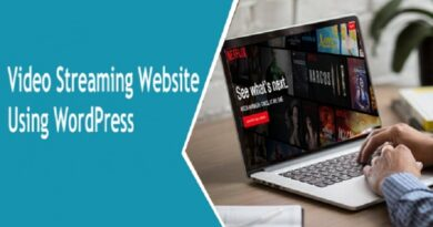 To Create Video Streaming Website Using WordPress