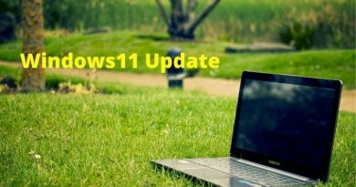 windows11 update