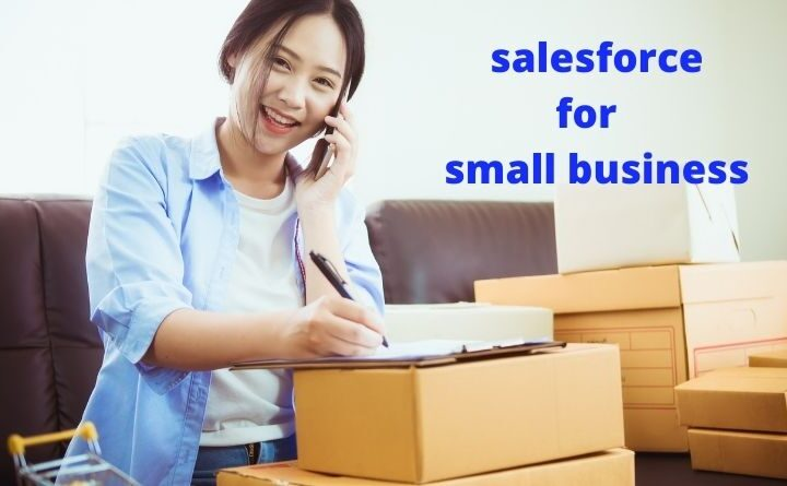 How Much Does Salesforce Cost For A Small Business?